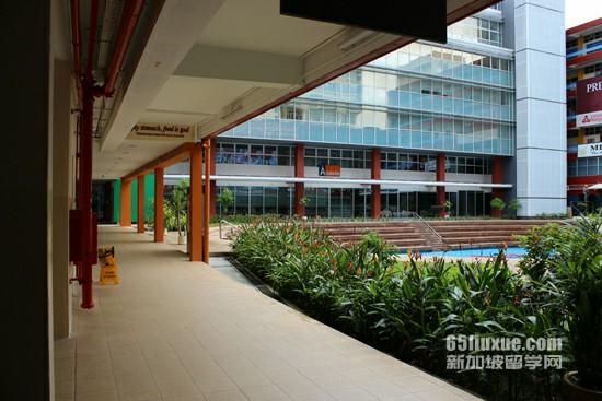 去新加坡上高中好吗