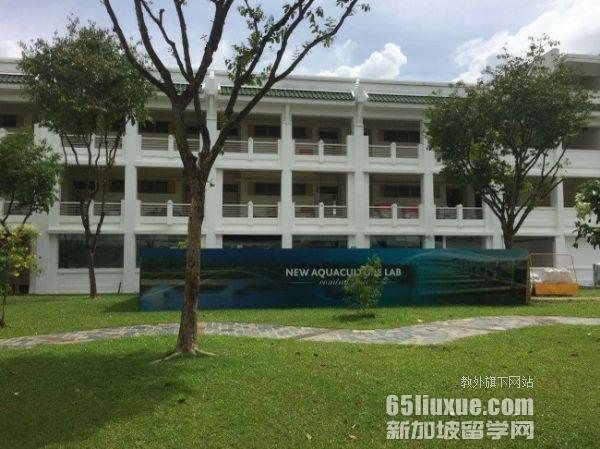 新加坡jcu考研专业