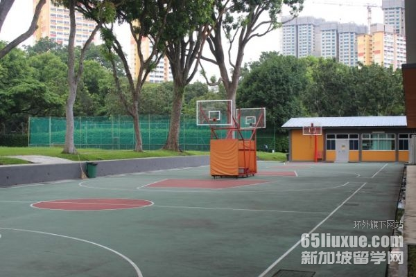 在新加坡哪类专业就业率高