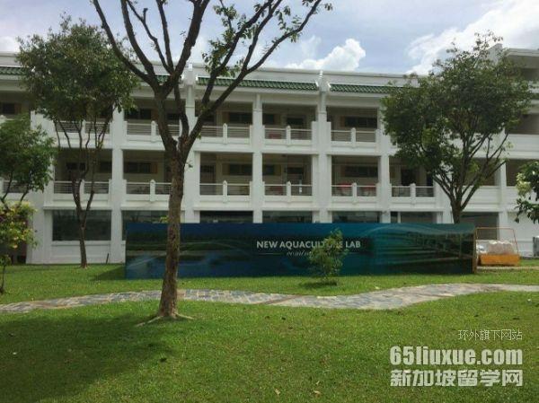 新加坡硕士春季入学
