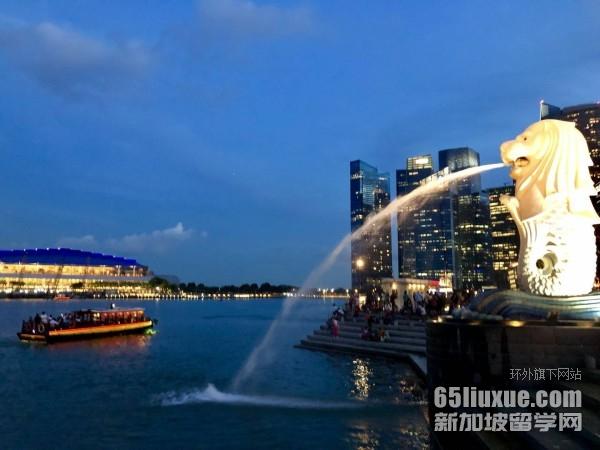 高考申请新加坡公立大学吗