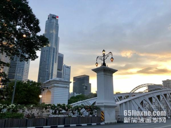 去新加坡读预科再读本科