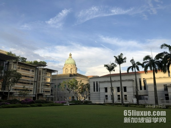 新加坡大学本科申请条件