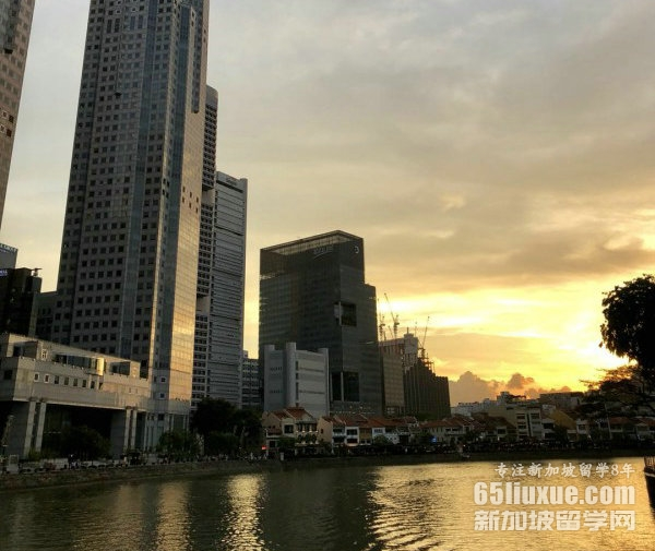 新加坡研究生热门专业