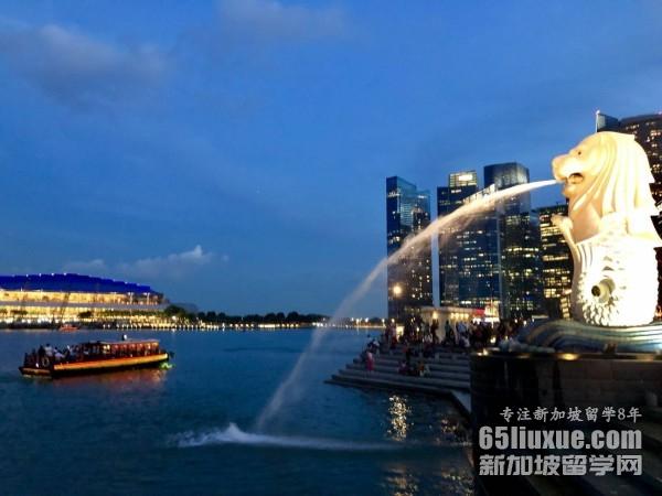 新加坡的私立大学